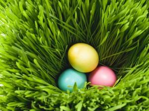 húsvét-tojás